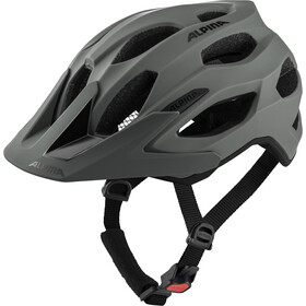 Alpina Carapax 2.0 Helm coffee grey matt